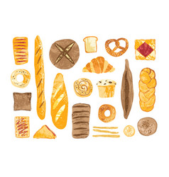 bundle of breads and homemade baked products of vector image