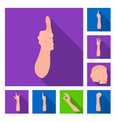 Gestures and their meaning flat icons in set vector