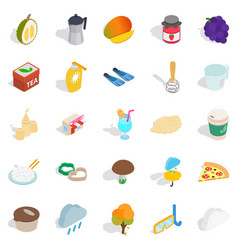 tropical additive icons set isometric style vector image