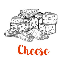 set of cheese cuts isolated on white background vector image vector image