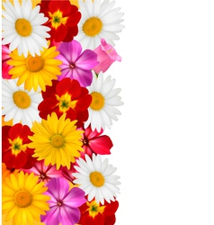 Flower border vector image vector image
