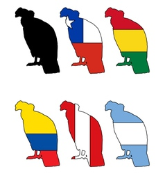 Andean Condor flags vector