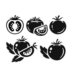 black tomatoes collection on white vector image