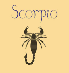 Flat on background scorpio vector
