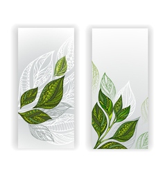Two Banners with Patterned Leaves of Tea vector