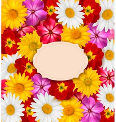 Flower background with a sign vector image vector image