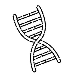 huma dna symbol vector image vector image