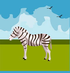 zebra icon african animals vector image vector image