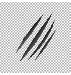 Claws scratch animal claw scratch vector