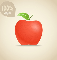 Cute fresh red apple vector image