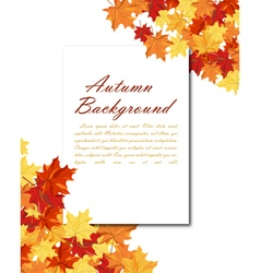 Maple Frame vector image vector image