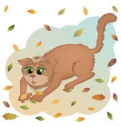 aut cat vector image