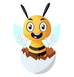 Bee waving from cracked egg on white background vector