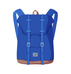 Blue backpack front view travel bag vector