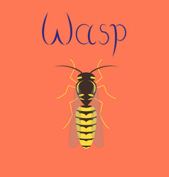 Flat on background insect wasp vector