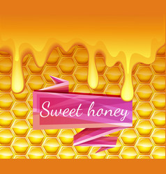 Realistic background with honeycombs and honey vector
