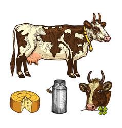 Set of milk food dairy products yogurt vector