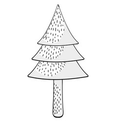 tree pine drawing cartoon vector image
