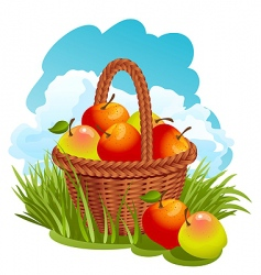basket with apples vector image vector image