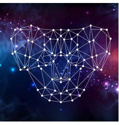 Abstract polygonal tirangle animal koala vector