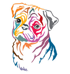 Colorful decorative portrait pug dog vector