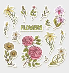 flowers set stickers wedding botanical garden vector image