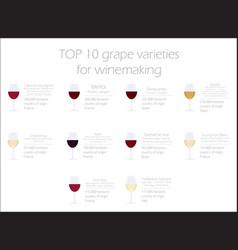 Grapes varieties for wine winemaking infographic vector