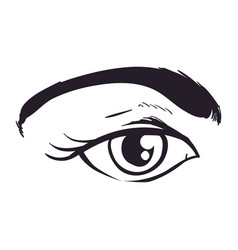 woman eye sketch vector image