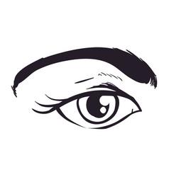 Woman eye sketch vector