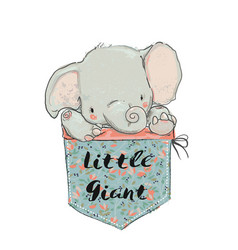 little pocket elephant vector image vector image