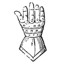 Gauntlet have armour for the hand vintage vector