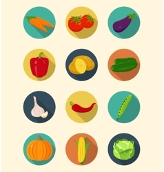 Vegetables icons set modern flat design Healthy vector image