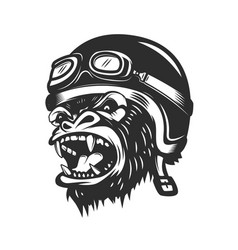 Angry gorilla ape in racer helmet design element vector