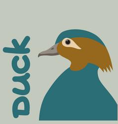 Bird duck head vector