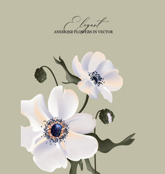 Elegant anemone flowers decoration hand-drawn 3d vector