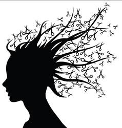 Hair Style Beauty Salon silhouette vector image