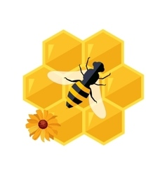 Honeycombs And Bee Sitting On Them Cartoon vector