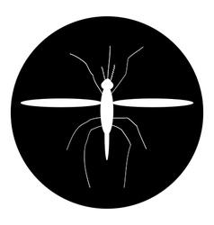 Mosquito button vector