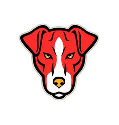 Plummer terrier dog front mascot vector