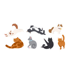 Set adorable cats various breeds lying vector