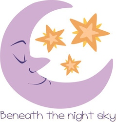 The Night Sky vector image