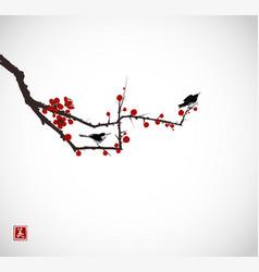 Two little birds on sakura branch traditional vector