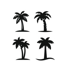 Tree palms set vector