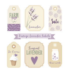 set of vintage labels and tags with lavender vector image