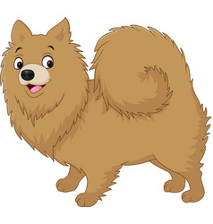 Cartoon dog pomeranian husky vector