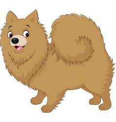 cartoon dog pomeranian husky vector image