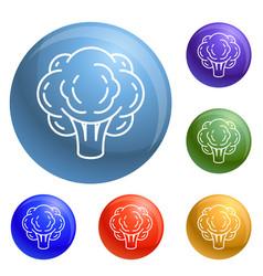 eco broccoli icons set vector image