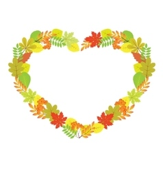 Heart from autumn leaves vector
