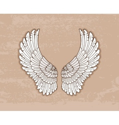 Pair white wings in vintage style vector