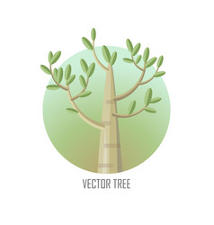 Poplar tree with green leaves vector